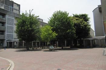 20100606_1