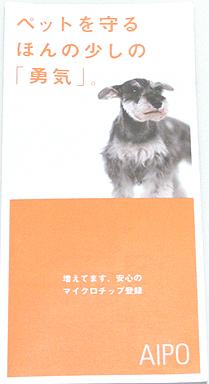20101204_1_2